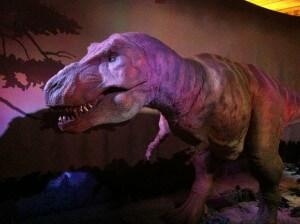 The animatronic T-Rex at the Natural History Museum