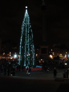 Trafalgar Square and a very tall tree at Christmas