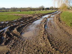 MUD at Chruch Farm Ardeley