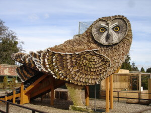Owl slide at the Scottish Owl Centre